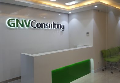 About GNV Consulting Services